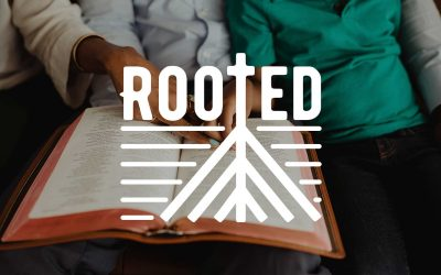 Rooted: A Study
